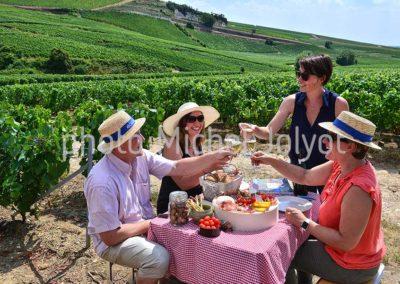 CH08 - Pic-nic dans les vignes avec Aÿ-Champagne Expérience